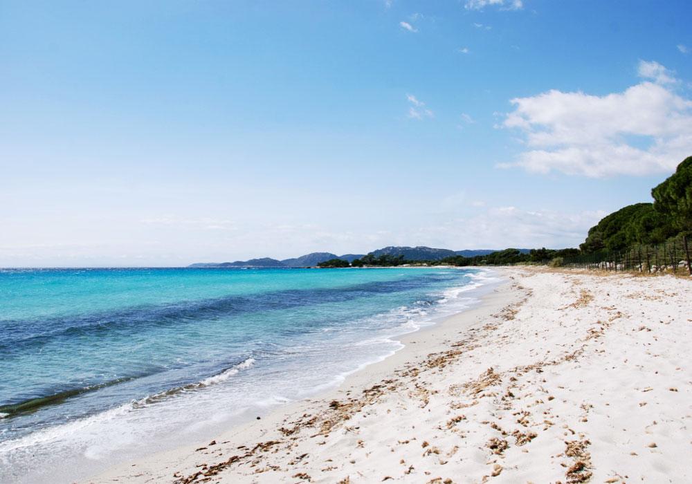 villa en location en corse du sud avec piscine et accès plage